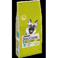 DOG CHOW Large Breed Adult корм для взрослых собак крупных пород с индейкой