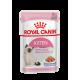 Royal Canin Kitten влажный корм для котят (в желе)