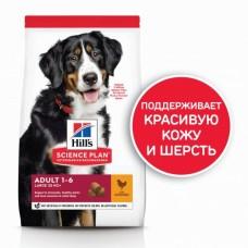 Hills Science Plan Canine Adult Advanced для крупных пород с курицей 12 кг