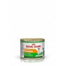 Royal Canin Adult Beauty корм для собак кожа и шерсть (Мусс) 195 гр