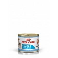 Royal Canin Starter Mousse корм для собак и щенков (Мусс) 195 гр