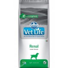 Farmina Vet Life Renal корм для собак при патологии почек
